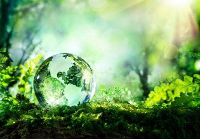 СВЕТОВЕН ДЕН НА ОКОЛНАТА СРЕДА 2019г. World environment day!